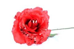 Decoratief nam bloem toe royalty-vrije stock afbeeldingen