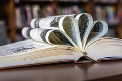 Decoratief open boek Stock Afbeelding