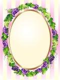 Decoratief ovaal druivenframe Stock Fotografie