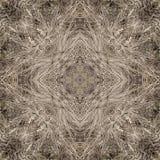 Decoratief patroon, doorweven lijnen, de combinatie fragmenten van beelden stock foto's