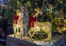 Decoratief verfraaid voor Kerstmisvieringen de straat van Sderot Ben Gurion in Haifa in Israël Stock Foto's