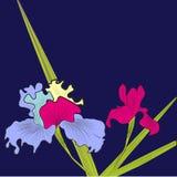 Decoratieve achtergrond met iris royalty-vrije illustratie