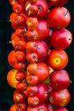 Decoratieve appelen Royalty-vrije Stock Afbeeldingen