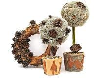 Decoratieve bomen met kroon Stock Foto's
