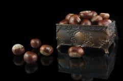 Decoratieve borst met kastanjes Stock Afbeelding