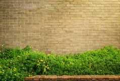 Decoratieve bruine bakstenen muur met gras Stock Foto's