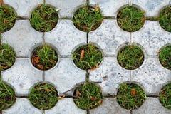 Decoratieve die bestrating met gaten met gras worden gevuld stock foto's