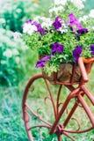 Decoratieve Fiets in Tuin Stock Afbeeldingen