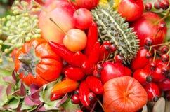 Decoratieve fruit en groente Stock Afbeeldingen
