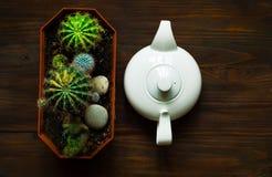 Decoratieve gekleurde cactus en witte ketel op houten achtergrond, hoogste mening, vrije ruimte voor tekst Royalty-vrije Stock Foto's