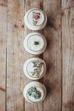 Decoratieve glasvaas met wit zand en succulents Royalty-vrije Stock Afbeeldingen