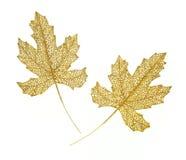 Decoratieve gouden bladeren Royalty-vrije Stock Foto's