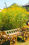 Decoratieve houten kar dichtbij zonnebloemen royalty-vrije stock foto