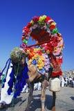 Decoratieve kameel voor huur Stock Foto