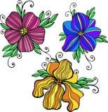 Decoratieve kleurrijke vectorbloemillustraties Vector Illustratie