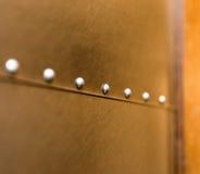 Decoratieve Klinknagels op Roestvrij staal Royalty-vrije Stock Foto