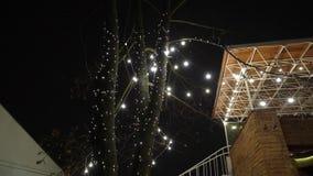 Decoratieve openluchtkoordlichten die op boom in de tuin bij nacht hangen stock video