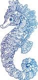 Decoratieve overzichts seahorse illustratie Stock Afbeelding