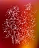 Decoratieve overzichtsdaisy bloemen in boeket Royalty-vrije Stock Foto