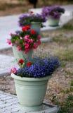Decoratieve parkpotten met bloemen op het voetpad Royalty-vrije Stock Afbeeldingen