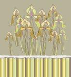 Decoratieve patroonuitnodiging met Irisbloemen, Royalty-vrije Stock Afbeelding