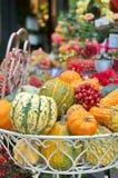 Decoratieve pompoenen Stock Fotografie