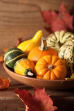 Decoratieve pompoenen en de herfstbladeren voor Halloween Royalty-vrije Stock Fotografie