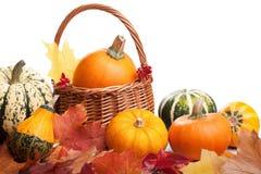 Decoratieve pompoenen en geïsoleerde de herfstbladeren Stock Foto