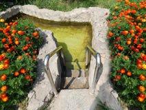 Decoratieve pool voor het doopsel van het zwemmen in de zonnige de zomer horizontale foto stock afbeeldingen
