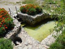 Decoratieve pool voor het doopsel van het zwemmen in de zonnige de zomer horizontale foto royalty-vrije stock fotografie
