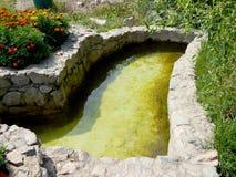 Decoratieve pool voor het doopsel van het zwemmen in de zonnige de zomer horizontale foto royalty-vrije stock foto's