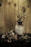 Decoratieve pottenregeling Royalty-vrije Stock Afbeelding