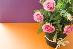 Decoratieve roze rozen, op een kleurrijke achtergrond Royalty-vrije Stock Foto