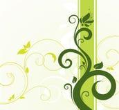 Decoratieve samenstelling Stock Fotografie