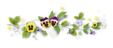 Decoratieve samenstelling met viooltjebloemen stock afbeelding