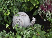 Decoratieve slak in de tuin stock afbeeldingen