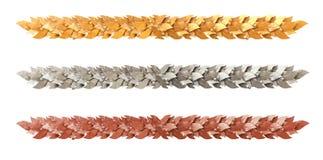 Decoratieve strook van Lauriertakken Stock Foto's