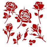Decoratieve vector nam en de knopsilhouetten toe Bloemen geplaatste takken Stock Afbeelding