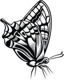 Decoratieve vlinder Stock Foto