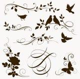 Decoratieve vogel en boomtaksilhouetten voor paginadecor Royalty-vrije Stock Foto
