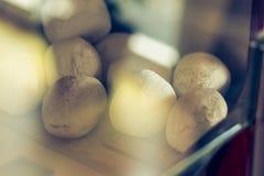 Decoratieve witte stenen in een bioethanol open haard stock fotografie