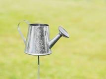 Decoratieve zilveren tuingieter Stock Afbeelding