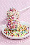 Decorating cake pops. Delicious chocolate snack Royalty Free Stock Image