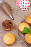 Decorating Chocolate Cupcakes. With Frosting in a Pastry Bag Stock Photography