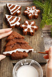 Decorating christmas gingerbread chocolate cookies with white ic Royalty Free Stock Photos