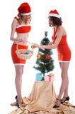 Decorating Christmas tree Royalty Free Stock Photo