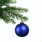 Decorating Christmas tree Stock Image
