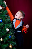 Decorating of Christmas tree 2 Royalty Free Stock Image