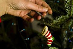Decorating christmas tree. Girl put red-white sock on a chistmas-tree Stock Photo