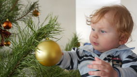 Decorating Christmas Tree With Baby stock video footage
